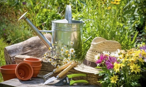 Herramientas de jardiner a imprescindibles para tu huerto - Herramienta de jardineria ...