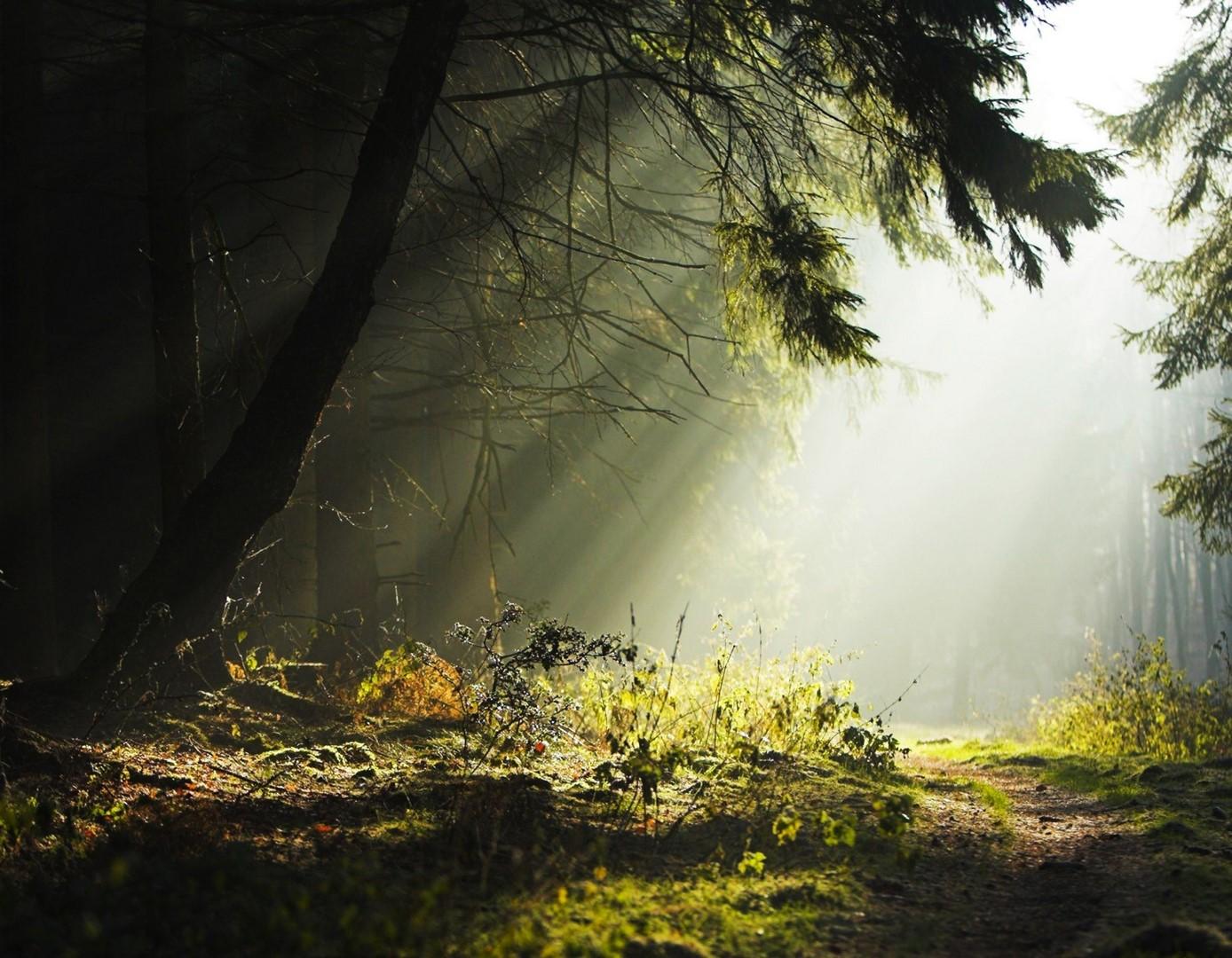 Fondos de pantalla de naturaleza bh