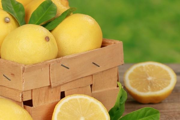 Cómo plantar limones. Ficha completa c