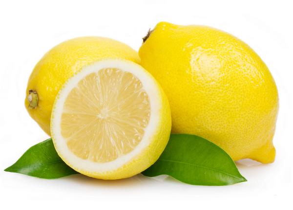 C mo plantar limones ficha completa medioambiente y for Limonero sin limones