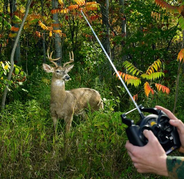 Los animales robóticos que ayudan a la caza de furtivos b