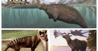Animales extintos que los científicos quieren devolver a la vida