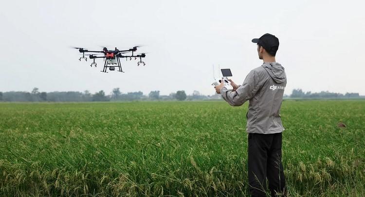 Las ventajas de utilizar drones en agricultura