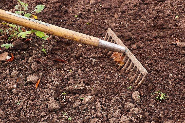 Tareas para el mantenimiento de jardines