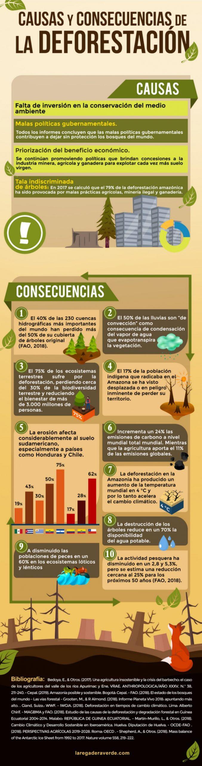 Infografía sobre la deforestación