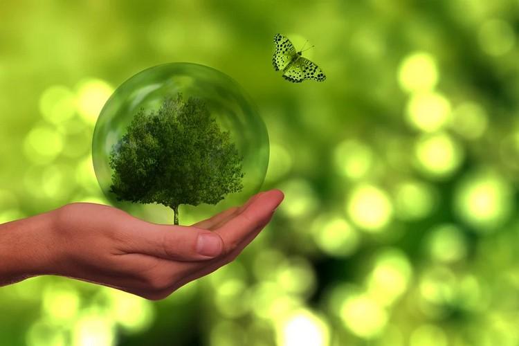 Qué es la eficiencia energética y cual es su objetivo